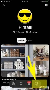 Pinterest Account Settings iPhone App
