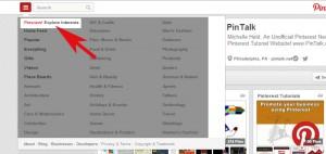 Pinterest Interests tool